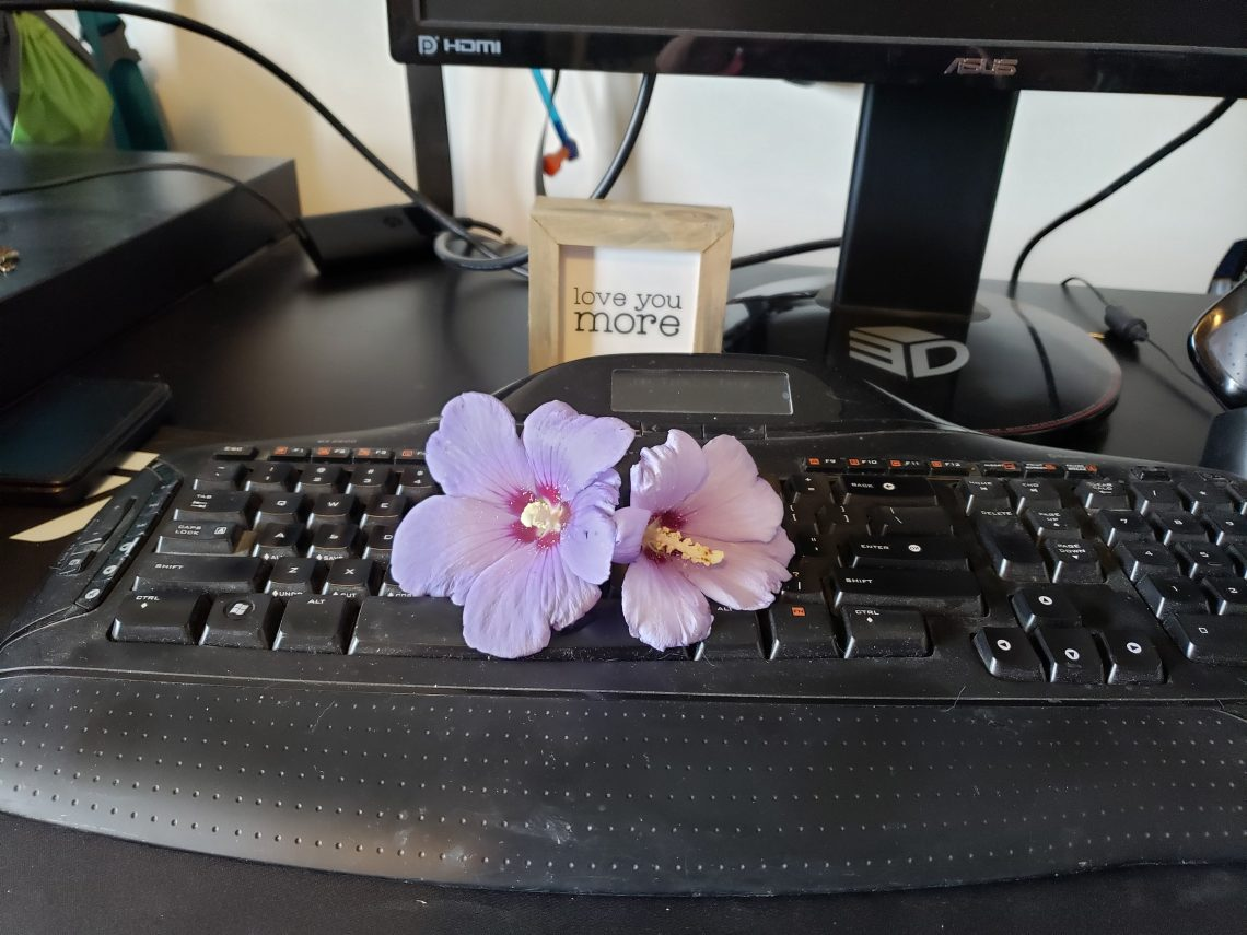 flowers on keyboard