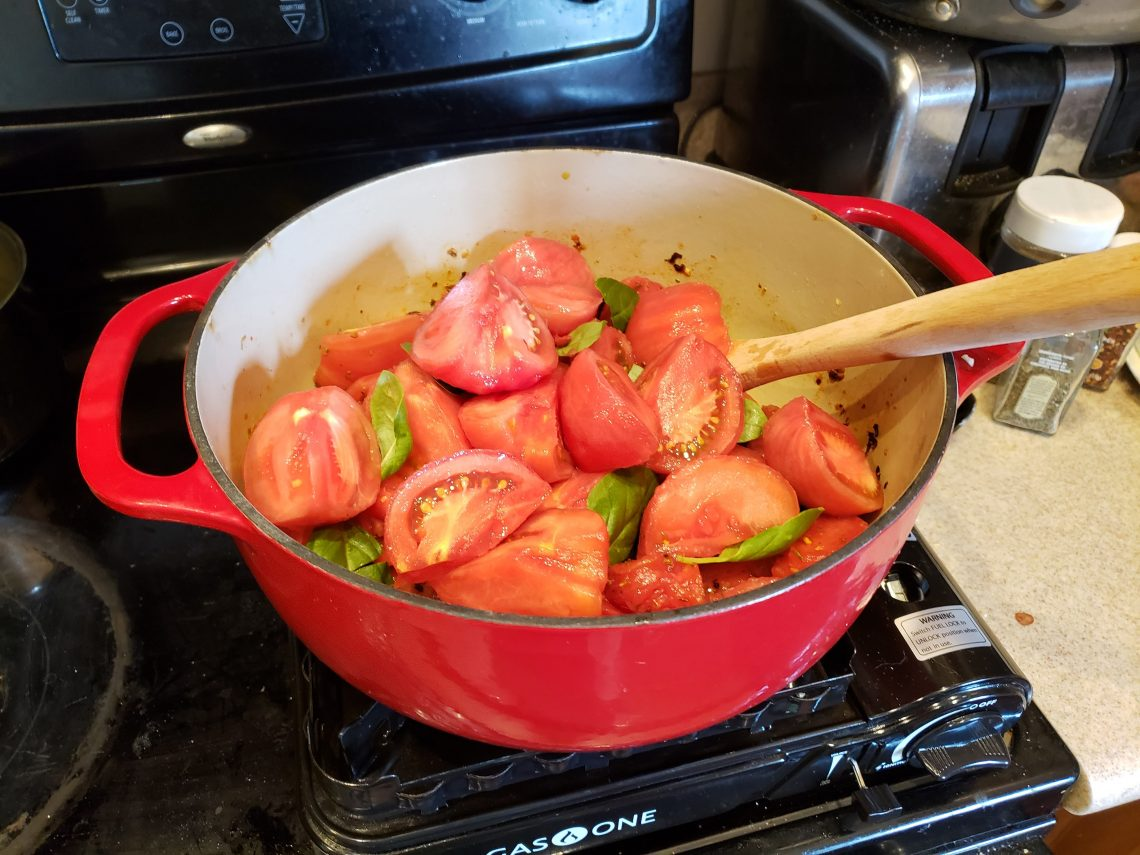 Tomatoes in pot